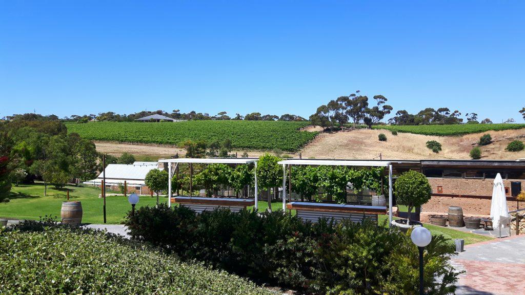 PJ in Australien (Adelaide) - Freizeitaktivitäten - Wine tasting im McLaren Vale