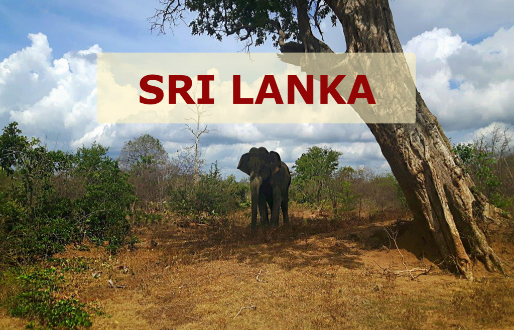 PJ in Sri Lanka_Slider