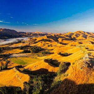 Infopaket PJ in Neuseeland — Hastings (inkl. CV)