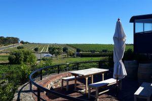 PJ in Australien (Adelaide) - Freizeitaktivitäten - McLaren Vale